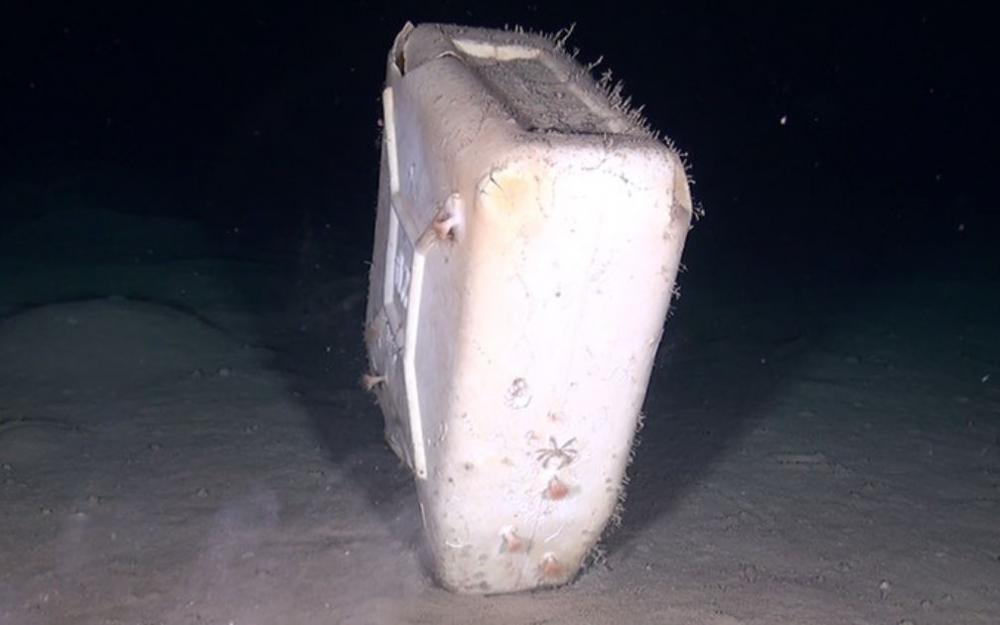Oceana propone prohibiciones para los plásticos más dañinos para el medio marino