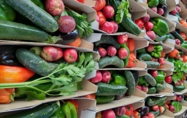 Agricultura ha comprado más de 290 toneladas de excedentes del sector primario