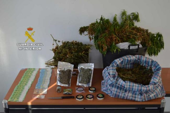 La Guardia Civil de Calviá detiene a un grupo dedicado al cultivo y venta de marihuana