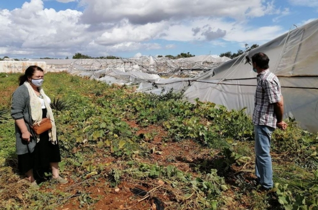 Inician las inspecciones para conocer los daños provocados en los cultivos por el cap de fibló y la granizada