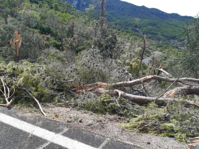 Infraestructuras evalúa los daños ocasionados por la tormenta