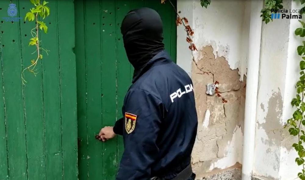 La Policía Nacional y la Policía Local de Palma detienen a una mujer con 25 kilos de marihuana en cogollos