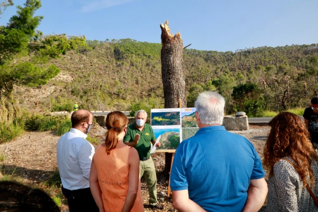 Armengol y Mir visitan las obras para paliar los daños del temporal del 29 de agosto en la Serra de Tramuntana
