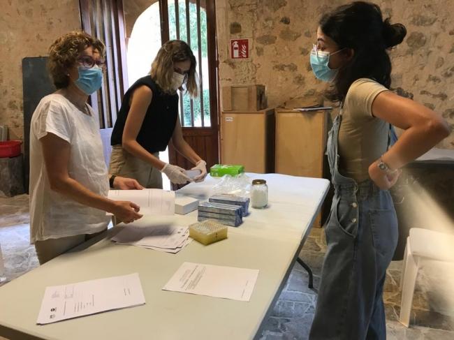 Familiares de 67 víctimas de la represión franquista participan en el protocolo de ADN activado en Son Coletes