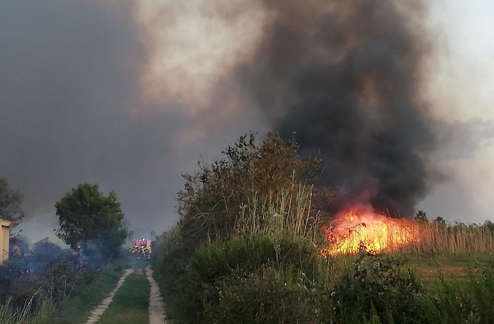 Extinguido el incendio de S'Albufera después de quemar 438 hectáreas