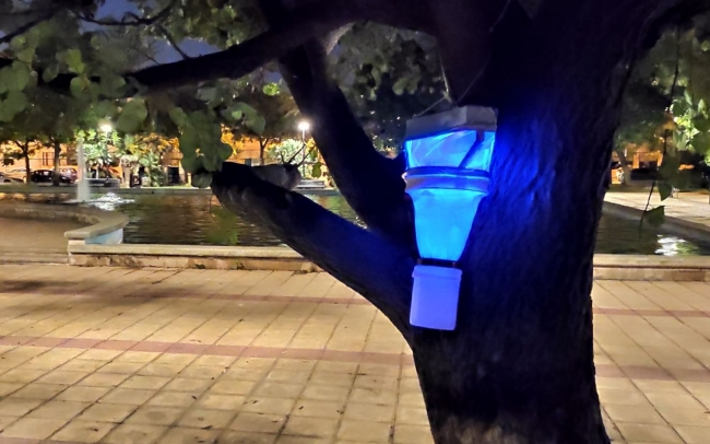 La UIB estudia insectos transmisores de enfermedades en parques de Palma