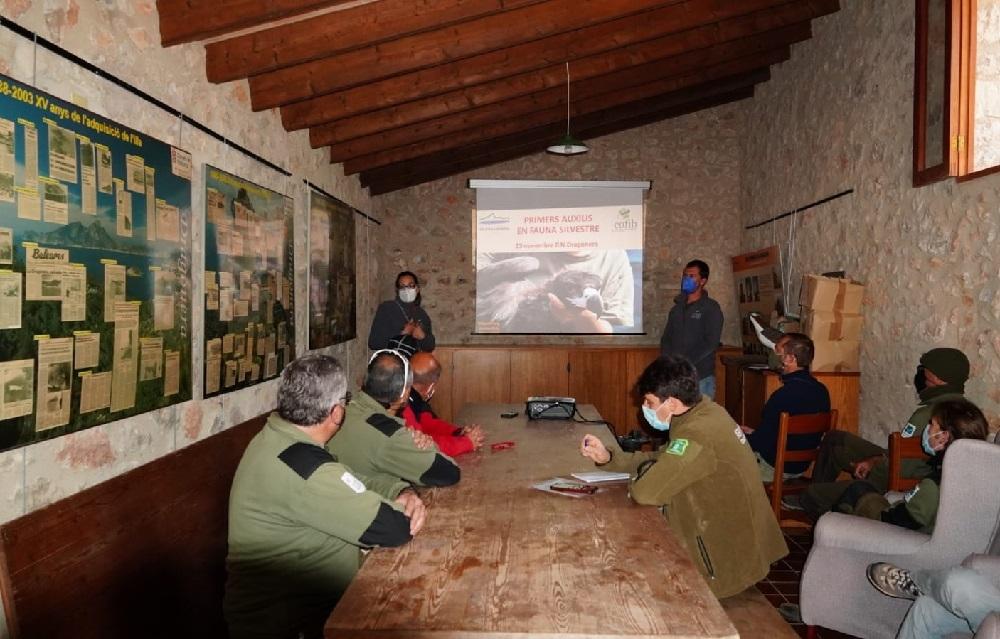 El COFIB forma al personal del Parque Natural de sa Dragonera en materia de primeros auxilios a fauna silvestre