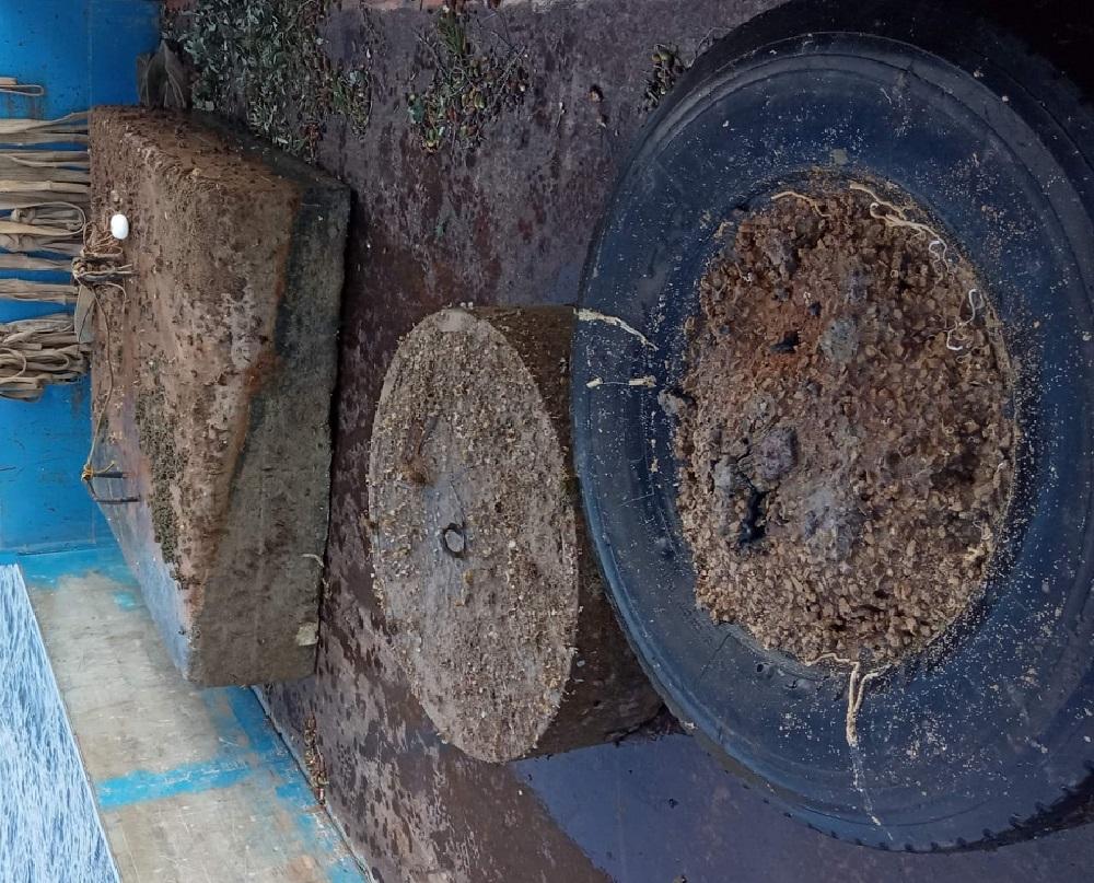 Medi Ambient retira tres 'muertos' de fondeo ilegal de la bahía de Fornells