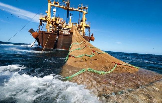 De la Concha muestra apoyo al sector de la pesca de arrastre ante las restricciones «inasumibles» impuestas por Europa