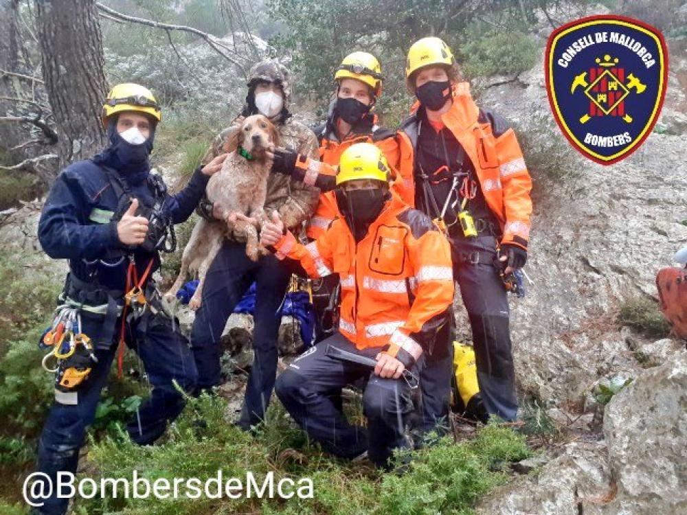 Bomberos de Mallorca rescatan a un perro en una sima de 35 metros de profundidad