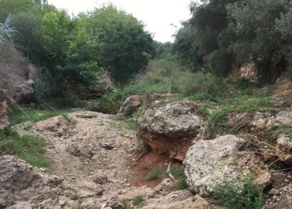 El Consell inicia la intervenció paisatgística al Torrent Gros