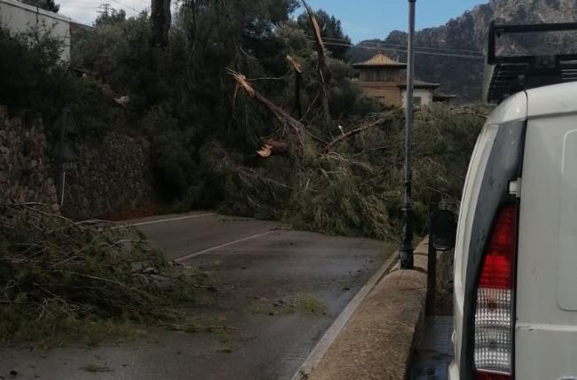 El equipo de emergencias en carreteras del Consell atiende 38 incidencias provocadas por la tormenta Hortensia