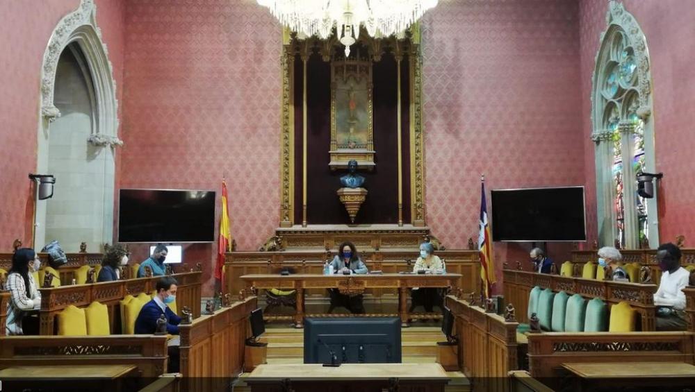 Todos los partidos del Consell de Mallorca se declaran contrarios a la implantación de un parque fotovoltaico en Son Bonet
