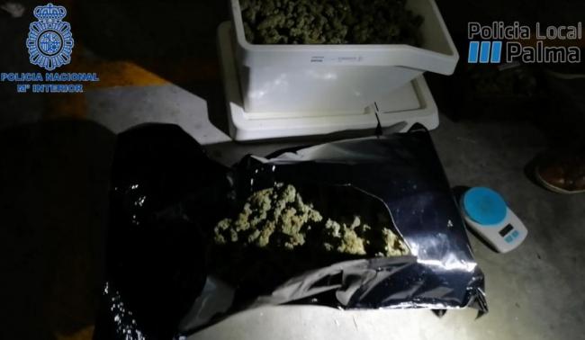 Desmantelado un punto de venta de droga cercano a centro escolares y deportivos en Palma