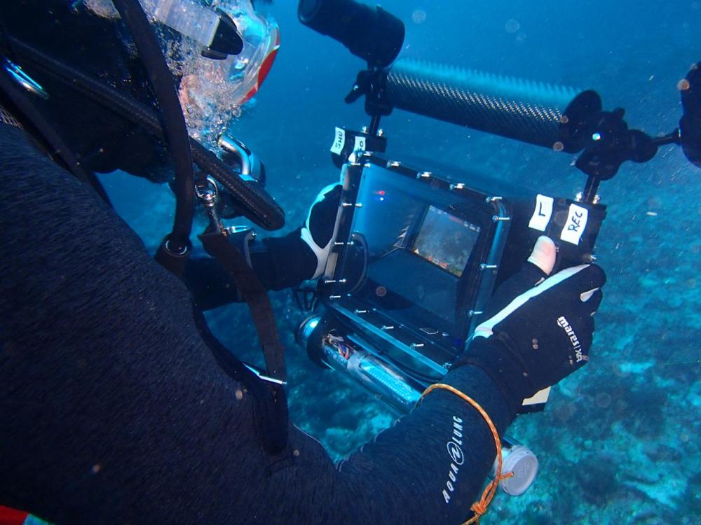 El Govern impulsa la investigación marina en Menorca