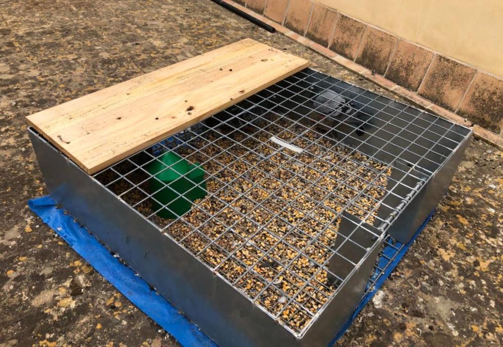Santanyí instala jaulas en diferentes puntos del municipio para poner fin a la plaga de palomas