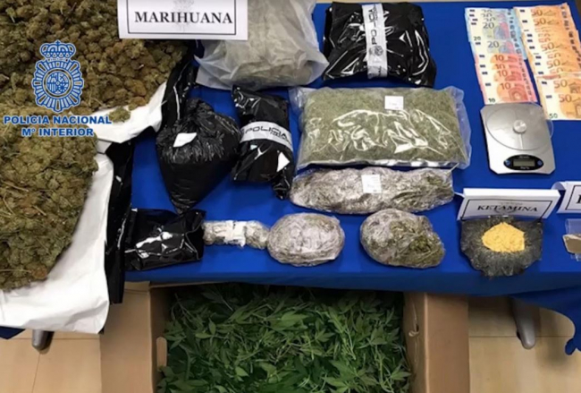 La Policía Nacional desmantela una plantación de marihuana en Ibiza