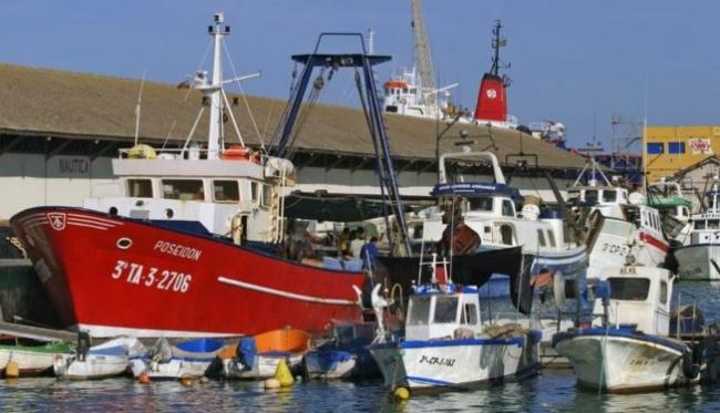 Aprobada la moción del PP para paralizar la orden de pesca de demersales en el Mediterráneo