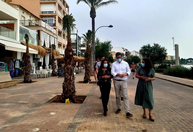 Inician la siembra de 400 palmeras en Playa de Palma