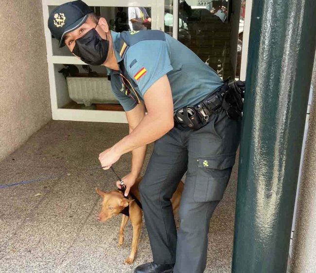 La Guardia Civil evacua dos edificios por el incendio de una vivienda en s'Arenal