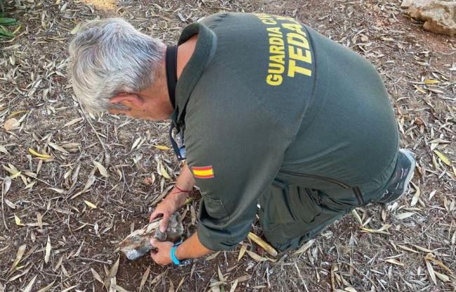 La Guardia Civil se hace cargo de un proyectil antiguo hallado en la playa de Son Bou