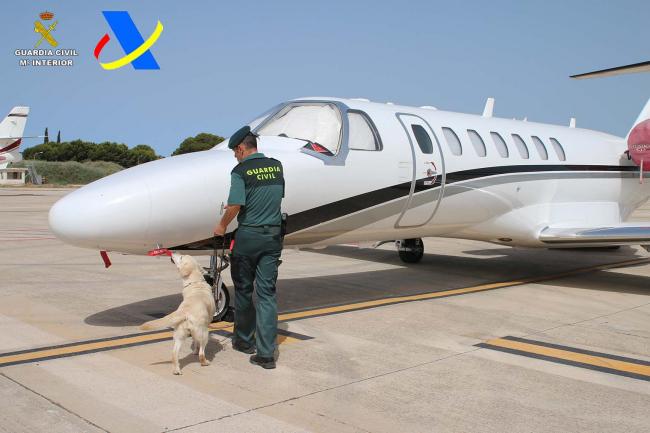 La Guardia Civil y la Agencia Tributaria han detenido a un hombre por tráfico de drogas en el aeropuerto de Ibiza