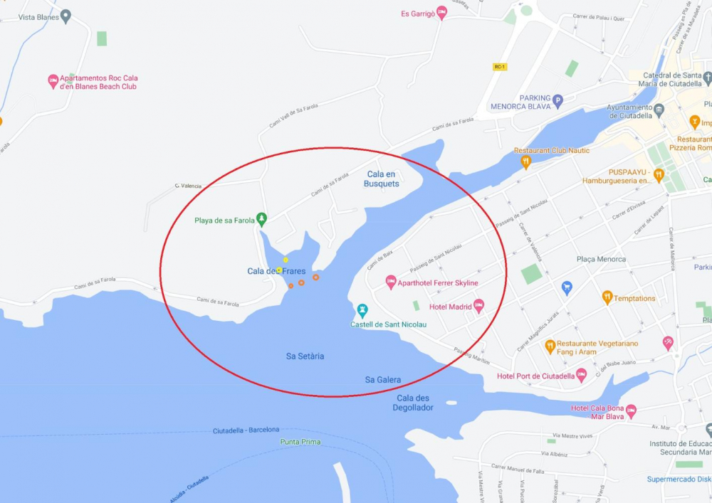 Ports IB prohíbe la entrada de embarcaciones a Cala des Frares para conservar la pradera de posidonia