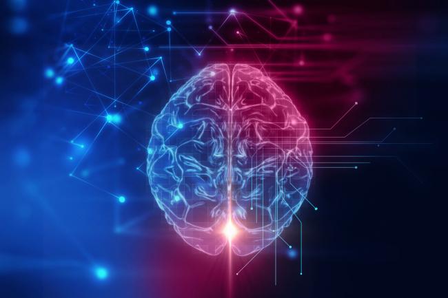 Autorizan a contratar el servicio de Neurocirugía para los pacientes del área de salud de Ibiza y Formentera por 1.275.000 €