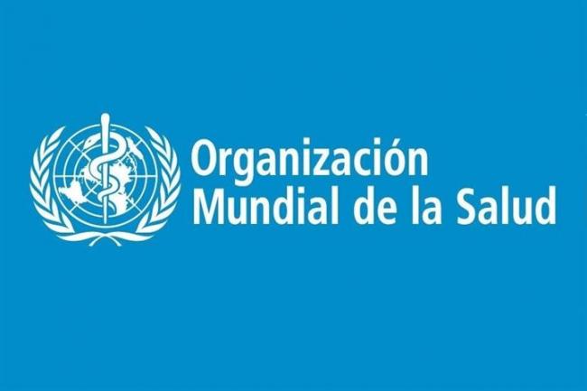 España entra a formar parte del Comité Permanente de la OMS para Europa