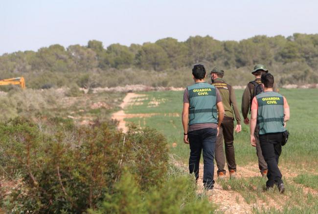 Desforesta 2 hectáreas de terreno protegido, causando la muerte a varias tortugas de tierra