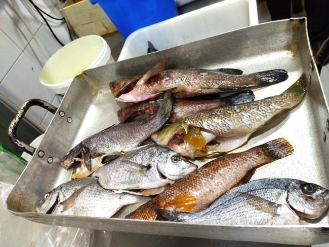 Pesca denuncia un restaurante de Palma por la tenencia de pescado arponado