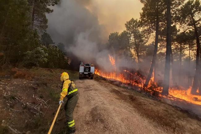 La campaña de incendios forestales se cierra con un descenso del 25% del número de siniestros respecto al promedio de la última década